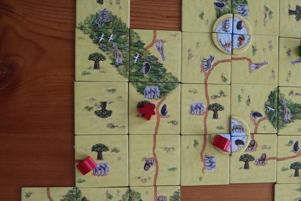 Apenbroodboom afgerond door rode speler